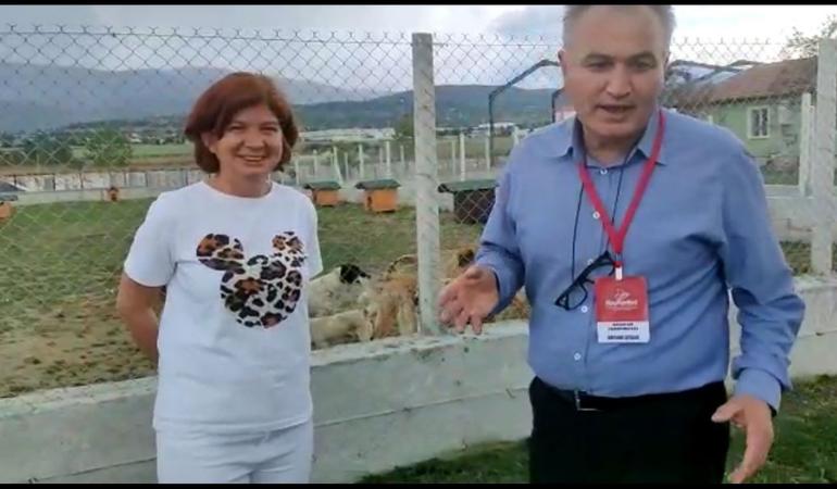 Hayvanların Yaşam Hakları Konfederasyonu'ndan Bolu Belediyesi'ne tam not